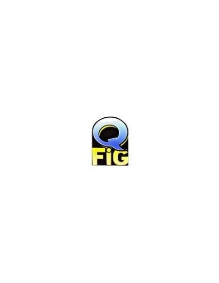 Q-Fig